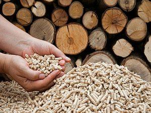 Il nostro pellet prodotto da trucioli e sfridi di puro legno.